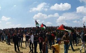 הפגנות בגדר (ארכיון) (צילום: ללא, חדשות)