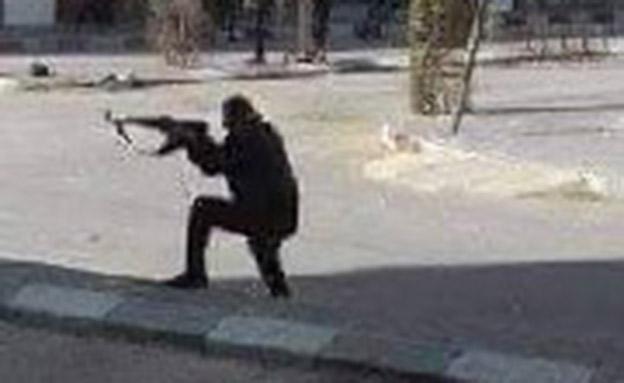 ירי ברחובות: המחאה נגד חמאס (צילום: חדשות)