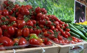 האם ירקות אורגניים באמת כאלה? (צילום: החדשות)