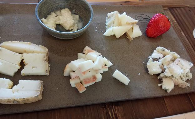 גבינות זוכות פרסים (צילום: יעל שגב)