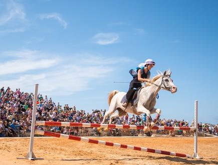 סוסים בהיפודרום