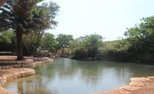 בפארק המעיינות (צילום: דוברות עמק המעיינות)