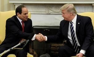 מצרים תצא מהיוזמה של טראמפ (צילום: רויטרס, חדשות)