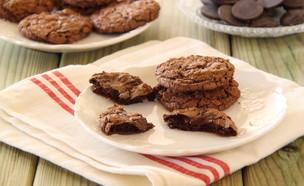 עוגיות שוקולד שוקולד צ'יפס 2 (צילום: חן שוקרון, אוכל טוב)