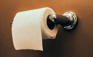 נייר טואלט (צילום: Atomazul, shutterstock)