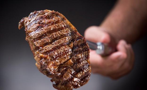 מסעדת גיליס גיליס מנה בשר מרמת הגולן (צילום: איתן דור)