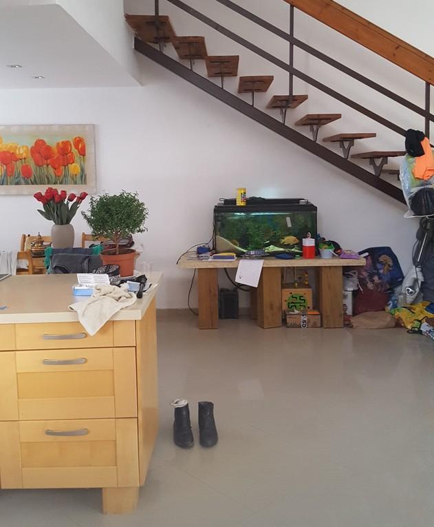 בית במרכז, ג, עיצוב אודליה ברזילי, לפני שיפוץ - 3