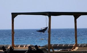לוויתן מול חופי אילת (צילום: רשות הטבע והגנים עומרי עומסי פקח ים, חדשות)