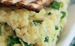 סלט תפוחי אדמה לפסח (צילום: יעל אילן, שמאלץ, המטבח היהודי המזרח אירופאי, הוצאת מודן)
