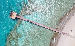 שמורת האלמוגים, היום (צילום: חן טופקייאן רשות הטבע והגנים, חדשות)