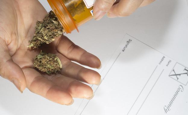 קנאביס רפואי, מריחואנה רפואית (צילום:  william casey, shutterstock)