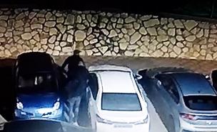 חברי החוליה שנעצרו (צילום: חדשות)