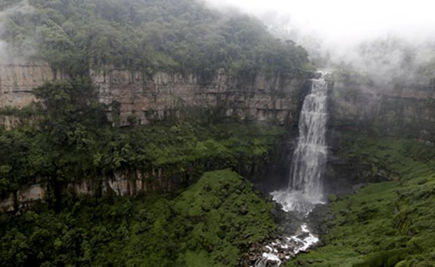 קולומביה (צילום: רויטרס, חדשות)