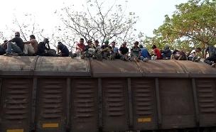 """התקווה של המהגרים: ה""""חיה"""" בדרך לארה""""ב (צילום: רויטרס, חדשות)"""