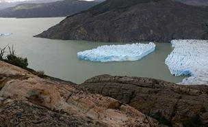 צ'ילה (צילום: CONAF, חדשות)