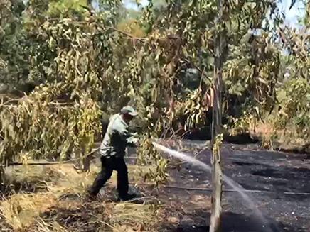 שרפה שנגרמה מבלון תבערה ביום חמישי