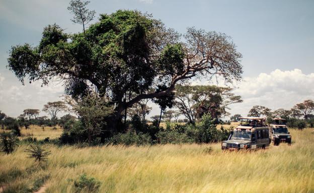 טיול באוגנדה (צילום: דן ליאור)