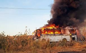 זירת השריפה (צילום: דוברות כבאות והצלה לישראל מחוז צפון, חדשות)