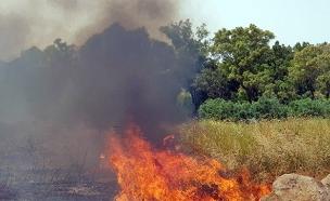 מדורות שלא כובו כראוי גרמו לשרפות (צילום: כבאות והצלה מחוז ירושלים, חדשות)