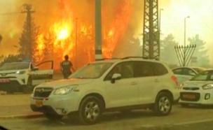 שרפה במבוא מודיעין (צילום: אנשי הדממה, חדשות)