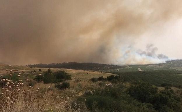 שרפה בקיבוץ הראל (צילום: חדשות)