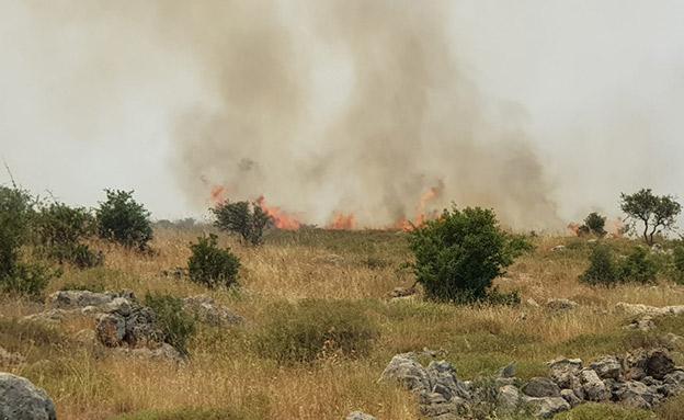 שרפה בשמורת הטבע נחל שילה (צילום: רועי עוז/TPS)