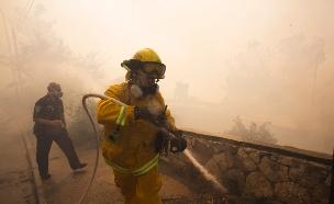 כותרות העבר: גל שריפות בכל הארץ (צילום: רויטרס, חדשות)