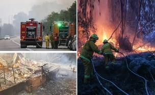 הושגה שליטה בכל השרפות (צילום: יונתן זינדל, פלאש , כיבוי והצלה90, חדשות)