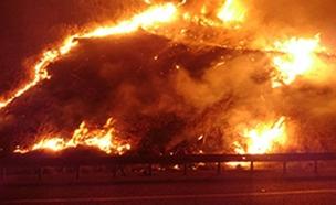 השרפה במנחמיה. אמש (צילום: דוברות כבאות והצלה לישראל מחוז צפון, חדשות)