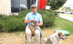 צפו בריאיון: המפגש המרגש עם הכלבות (צילום: החדשות)
