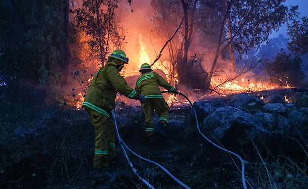 כבאים נלחמים באש, בשבוע שעבר (צילום: יונתן זינדל פלאש 90, חדשות)