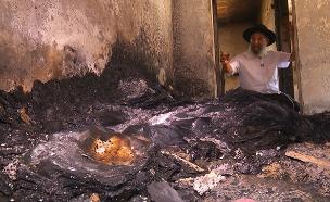 גל השרפות במבוא מודיעים (צילום: החדשות)