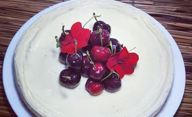 עוגת גבינה במיקרו (צילום: רון יוחננוב, אוכל טוב)