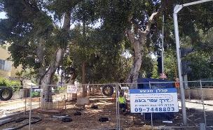 שדרות ירושלים החסומות (צילום: החדשות)