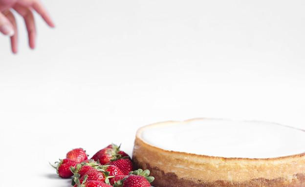 דלאל עוגת גבינה אפויה (צילום: פזית עוז)