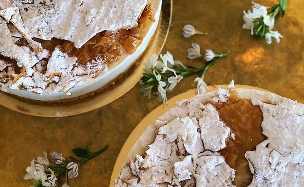 עוגת גבינה יוונית לשבועות (צילום: אורי עשת)