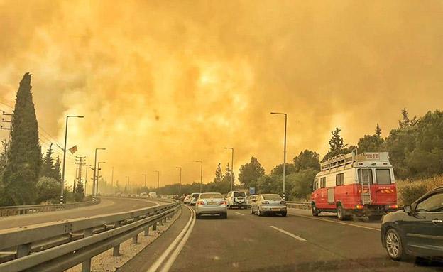 שרפוה סמוך לירושלים בשבוע שעבר (צילום: דוברות כבאות והצלה, חדשות)
