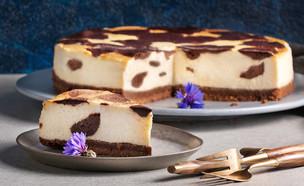 עוגת גבינה מנומרת (צילום: דניאל לילה , מחלבות גד)