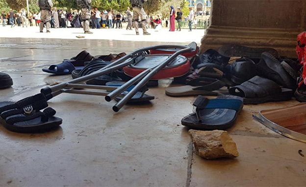 אבנים וכיסאות הושלכו על שוטרים (צילום: דוברות המשטרה, חדשות)