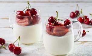 פנקוטה יוגורט ופירות אדומים (צילום: בועז לביא, אוכל טוב)