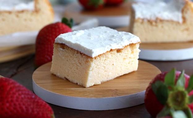 עוגת גבינה ב-5 מרכיבים (צילום: אריאל ברי בן חמו, הבלוג