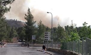 השרפה באבן ספיר (צילום: אביטל שרה כהן/TPS, חדשות)
