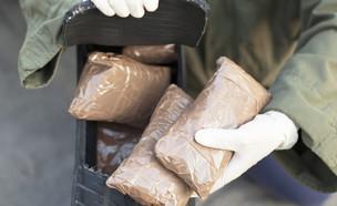 הברחת סמים (צילום: shutterstock | wellphoto)