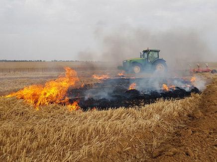 שדה נשרף