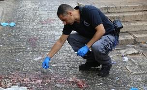זירת הפיגוע בעיר העתיקה (צילום: דוברות המשטרה, חדשות)