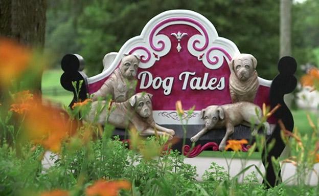 צפו בכתבה: גן העדן לכלבים בקנדה (צילום: חדשות)