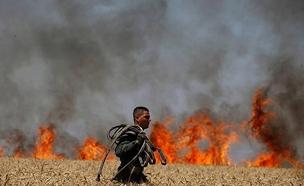 שרפה בעוטף. ארכיון (צילום: אלי כהן דובר כבאות מחוז דרום, חדשות)