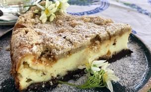 בית התה קיבוץ לוטן עוגה  (צילום: ריטה גולדשטיין, אוכל טוב)