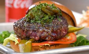 פסטיבל המבורגר קוקה קולה פריז טקסס  (צילום: רן בירן, יחסי ציבור)