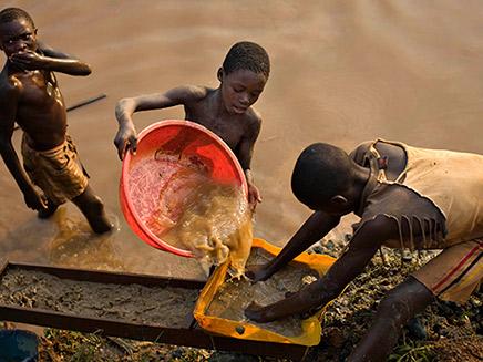 רוב הילדים העובדים - נשלחים לשדות (צילום: רויטרס, חדשות)